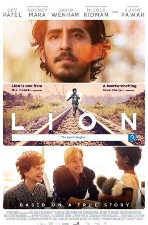 Lion - Seeking Connection
