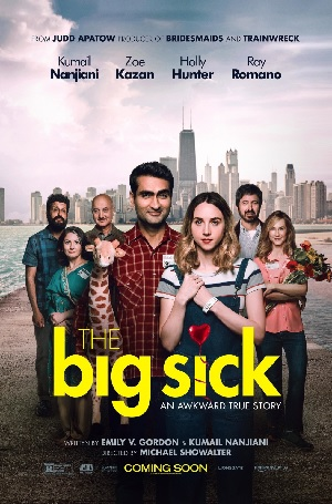 """The Big Sick"" is a touching love story and true American tale"