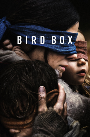Bird Box—Leading by Faith not by Sight