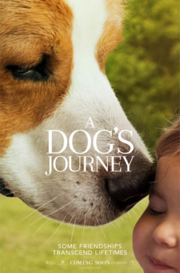 A Dog's Journey - Love and Belonging